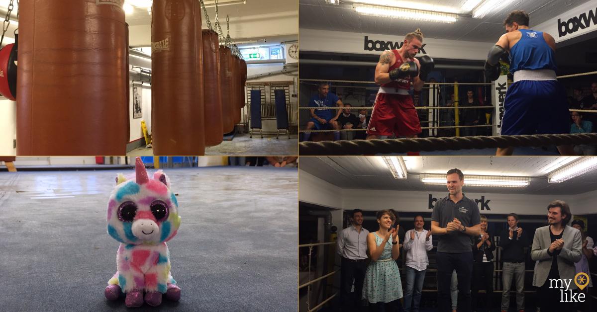 Boxwerk, Fighters, Unicorn Mascot, Grillido