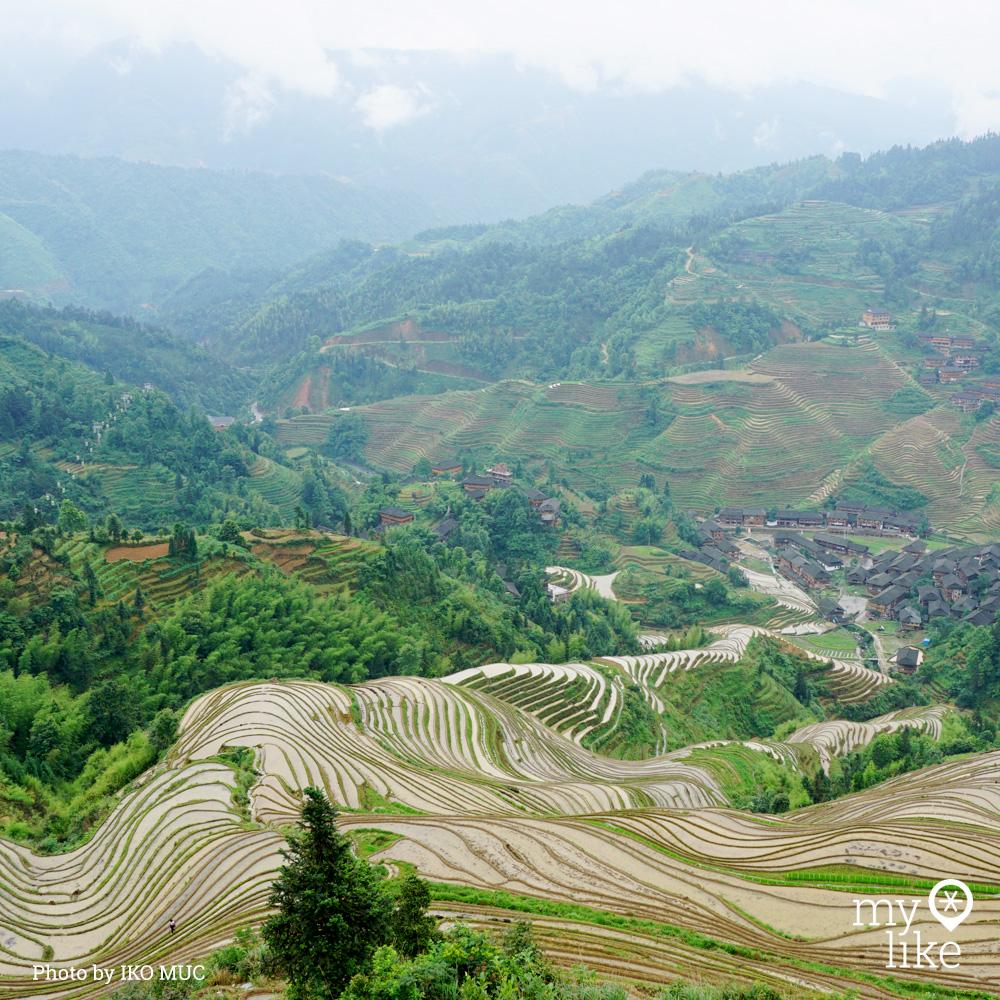 myLike of the Day - Longsheng Rice Terraces, China