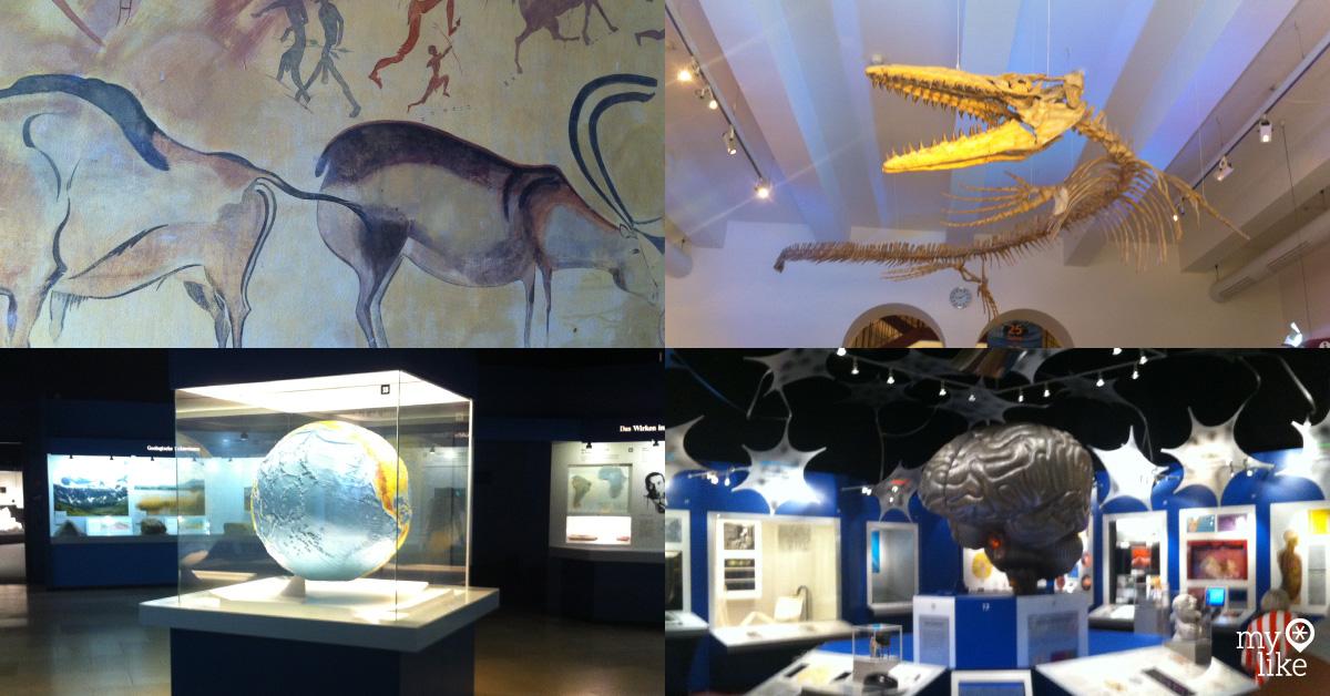 Museum Mensch & Natur Munich