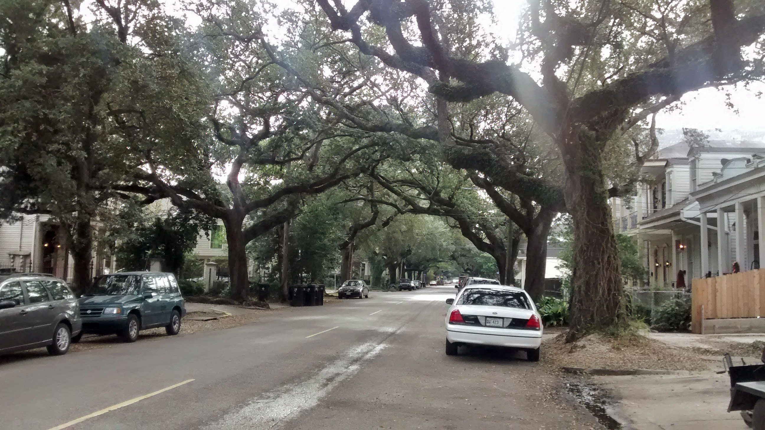 Cemetries 1024x575 - Visiting New Orleans In January: Top 8 Things To Do