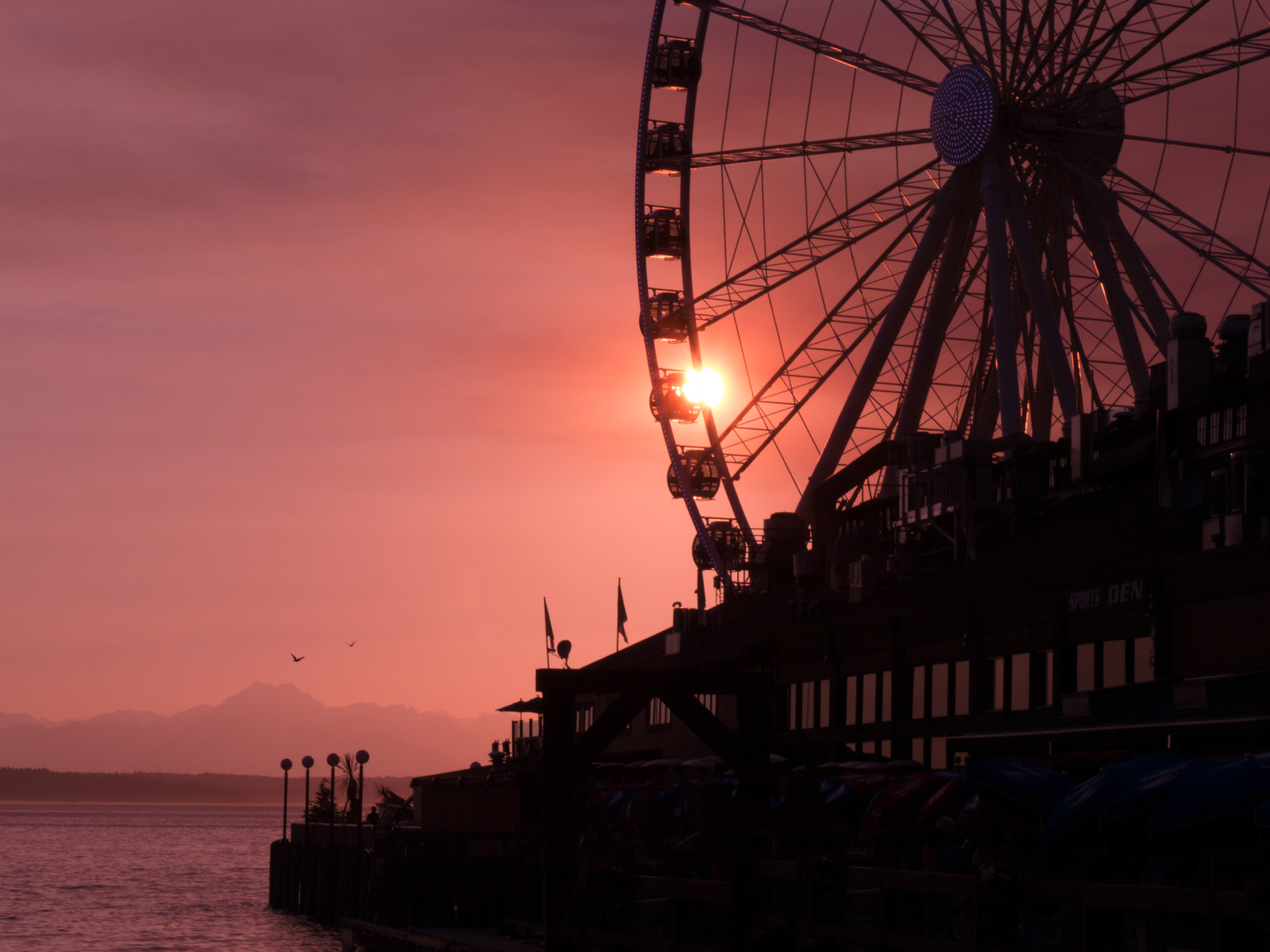 Seattle Great Wheel 560x420 - Top 5 Places to Visit on Your Next Seattle Visit